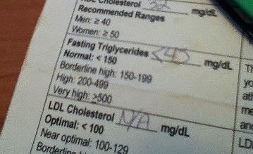 triglyceride number
