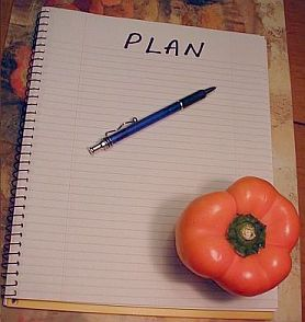 Orange pepper with plan