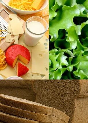 Riboflavin foods
